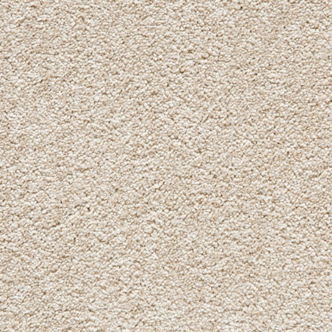 Balta Soft Noble Brushed Cotton 700 Secondary Back Carpet